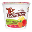 Brown Cow Cream Top  Apricot Mango